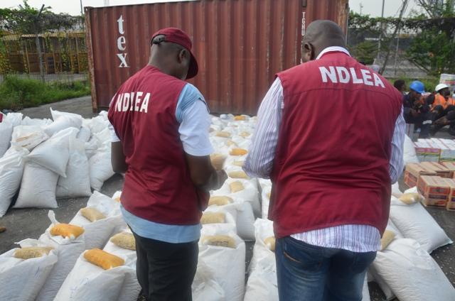 How NDLEA seized N50m worth of Tramadol capsules in Adamawa-TopNaija.ng