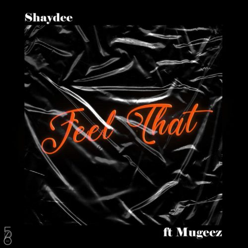 DOWNLOAD MP3: Shaydee ft. Mugeez (R2Bees) – Feel That