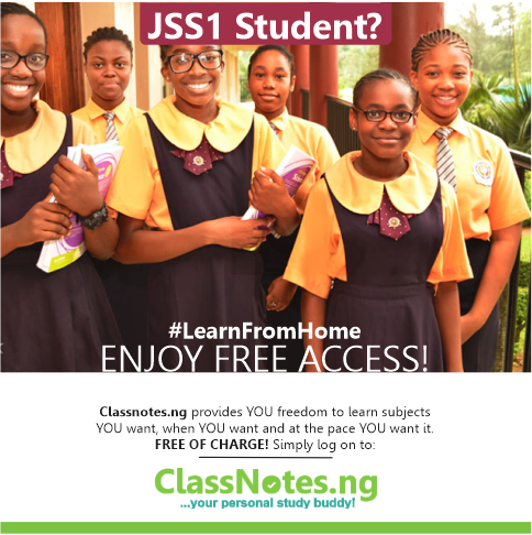 Classnotes.ng launches free learning site for secondary school students amidst COVID-19