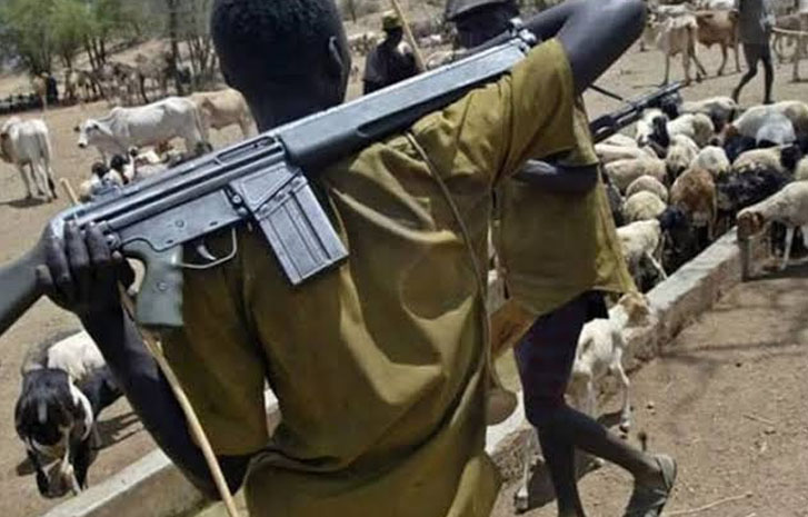 Suspected herdsmen kill three in midnight attack on Plateau community