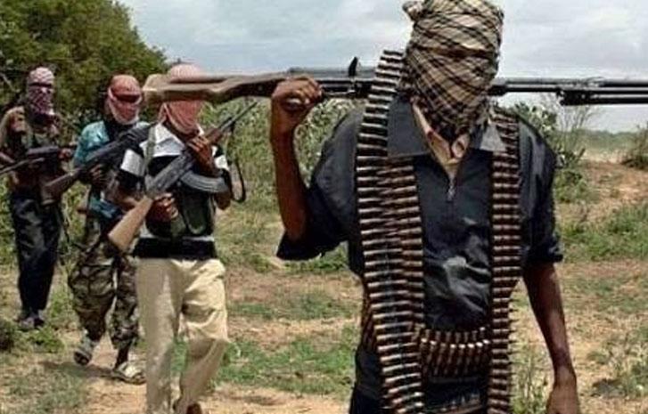 Armed bandits kill 20 in Agatu LGA of Benue state-TopNaija.ng