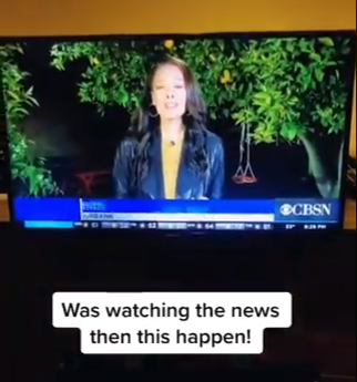 Husband excitedly crashes wife's news broadcast happening in their backyard