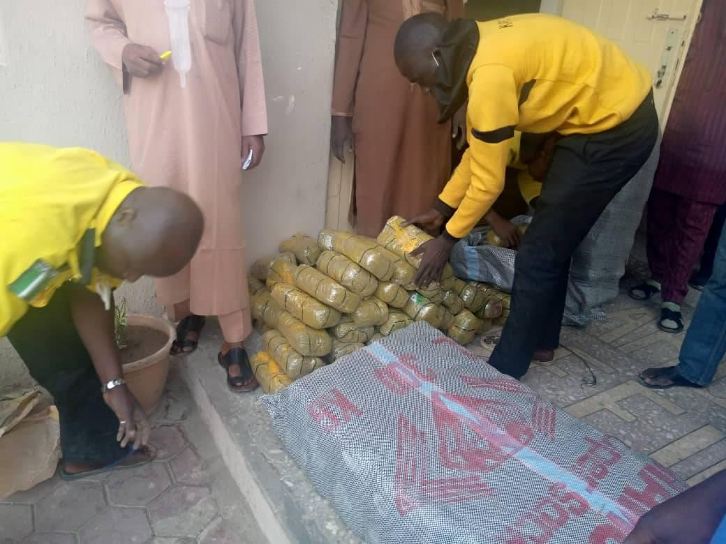 Security agency in Kano intercepts vehicle with 172 parcels of Indian Hemp worth N30m-TopNaija.ng